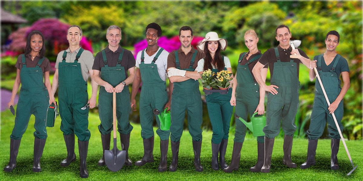 Sachez reconnaitre si votre paysagiste saura répondre à vos besoins et s'il est compétent.