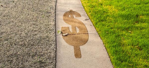 Réalisez des économies en comparant les prix des paysagistes professionnels de votre région.