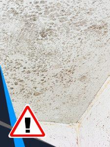 Si vos plafonds font passer l'eau qui coule de votre toiture, des rénovations sont nécessaires.