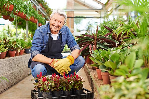 horticulteur-architecte-paysagiste-jardinier-difference-quebec