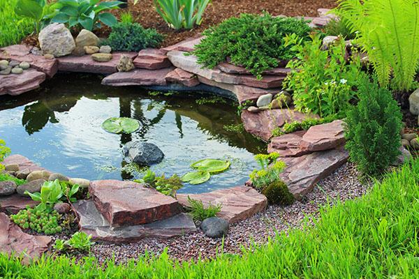 bassin-eau-etang-cour-maison-amenagement-paysager.