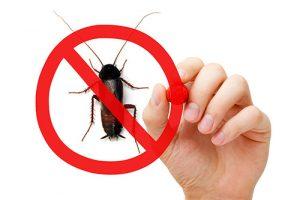 dites-non-aux-parasites-avec-un-bon-exterminateur